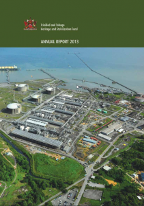 HSF-2013-Annual-Report